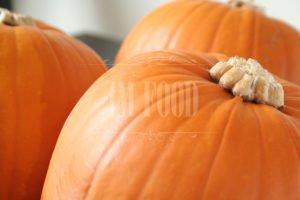 Pumpkin-Salsa